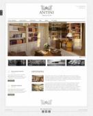 Разработка сайта Antini