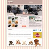 Разработка сайта для приюта собак